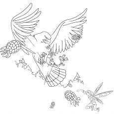The Hawk Tinkerbell