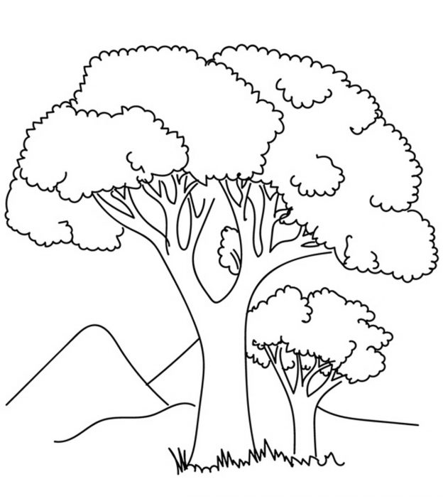 coloring pages of tree | Top 25 Tree Coloring Pages For Your Little Ones