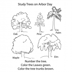 small coloring pages of trees - photo#6