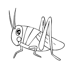 Two-Striped Grasshopper Coloring Page