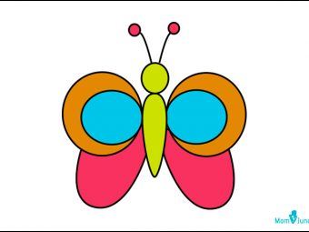 How To Draw A Butterfly: A Step-By-Step Guide