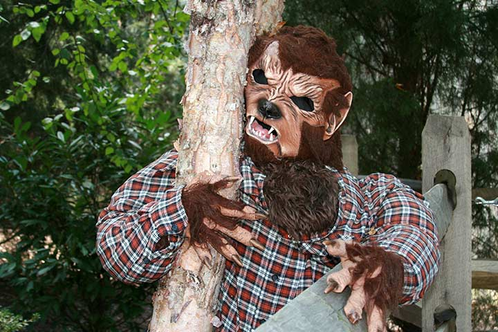 Werewolf - halloween costume ideas for kids Pictures