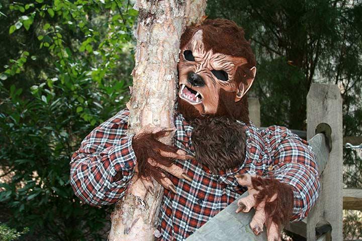 Werewolf - halloween costume ideas for kids Pictures