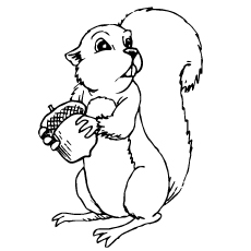10 Cute Chipmunk Coloring Pages Your Toddler Will Love To Color