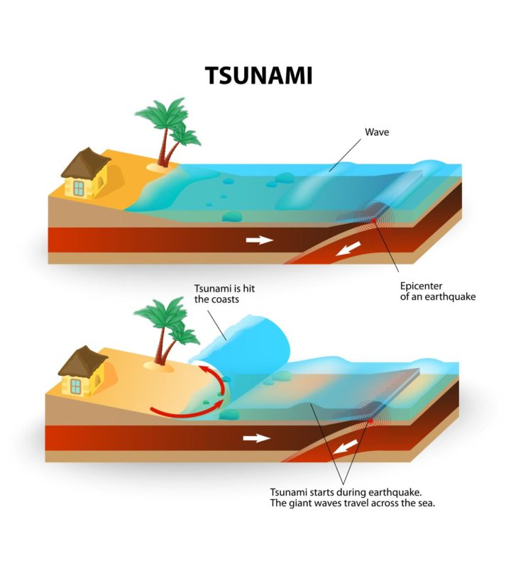 Facts And Information On Tsunami For Kids