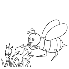 Bee Sucking Honey from Flower Coloring Page