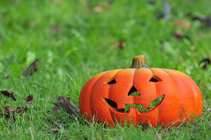 Halloween Games For Toddlers - Pin The Nose On The Jack-O-Lantern