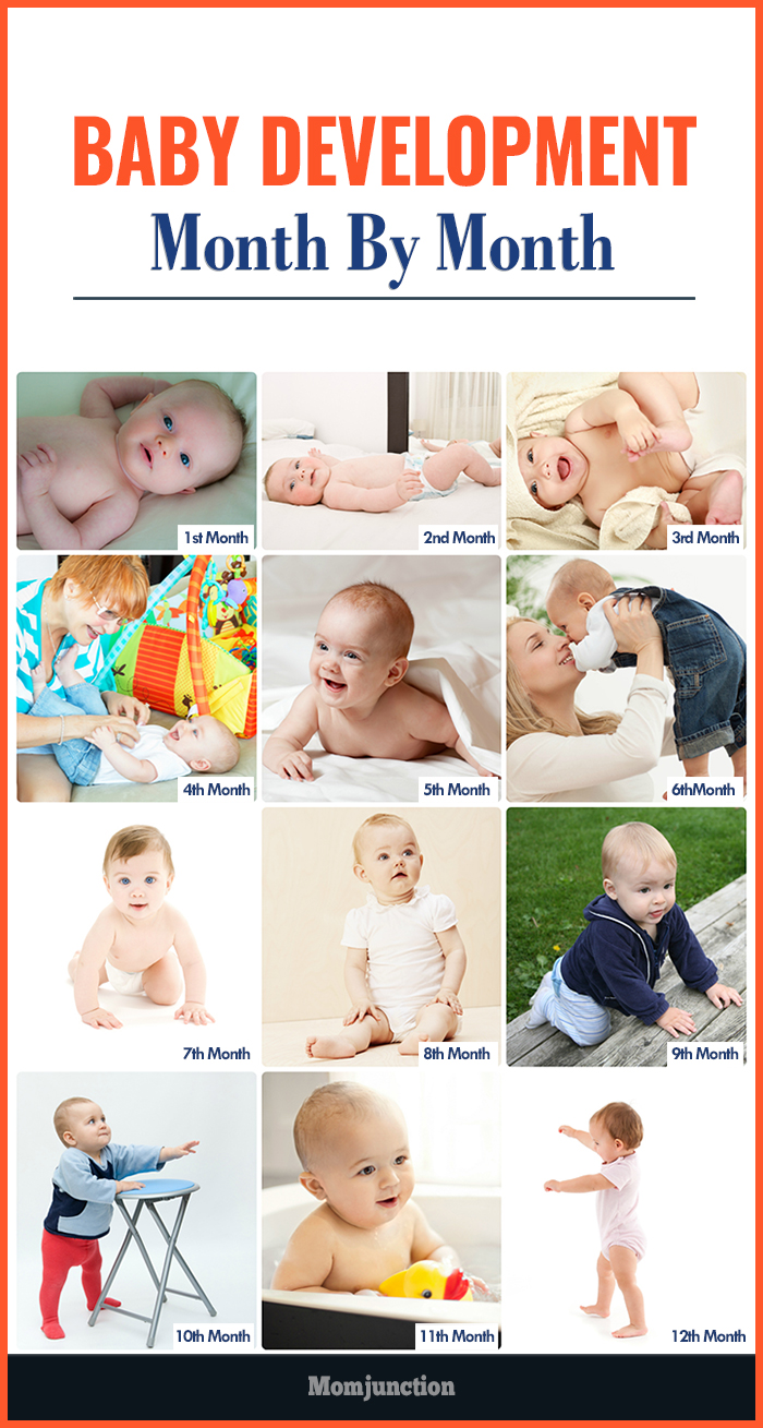 Pregnancy development month by month pictures to pin on for 9 month baby development