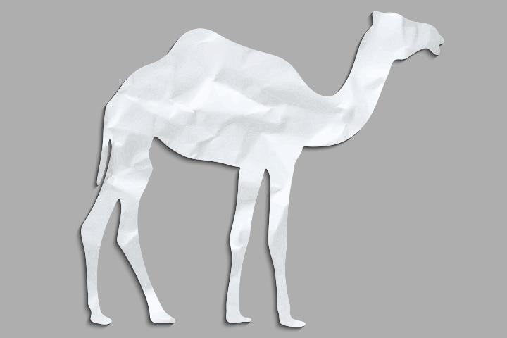 Camel Crafts For Kids - Camel Paper Craft