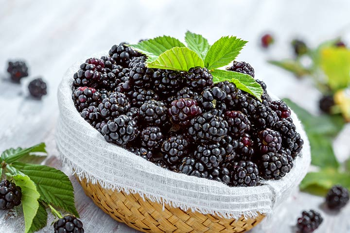 Can You Eat Blackberries During Pregnancy