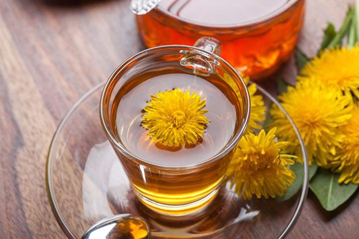 Dandelion Tea During Pregnancy