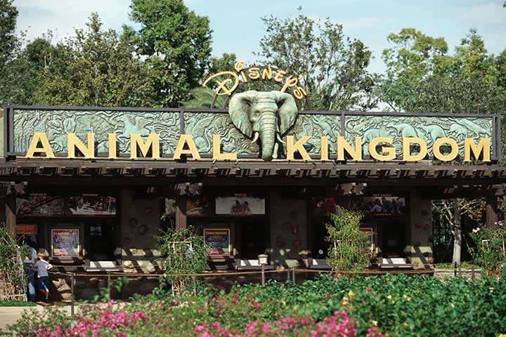 Theme Parks In USA - Disney's Animal Kingdom, Orlando