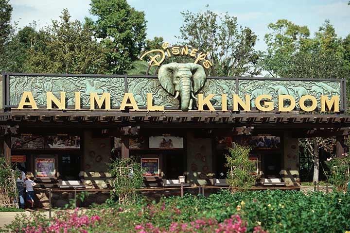 Theme Parks In USA - Disney's Animal Kingdom, Orlando