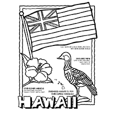 Top 10 Hawaiian Coloring Pages For Toddler
