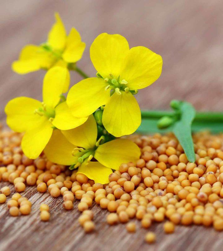 Mustard During Pregnancy