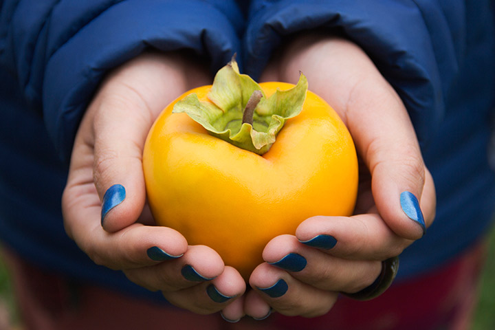 Persimmon During Pregnancy