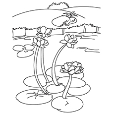 Lake Coloring Pages - Water Lilies In A Lake