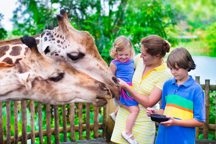 Scavenger Hunt Ideas For Kids  - Zoo Scavenger Hunt