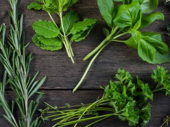 5 Useful Herbs For Breastfeeding Moms