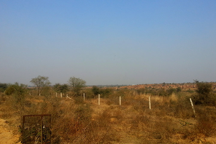 Aravalli Biodiversity Park Gurgaon Events & Timings