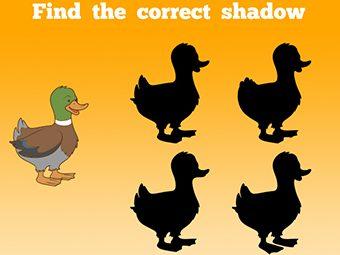 5 Fun Duck Theme Activities For Your Preschoolers