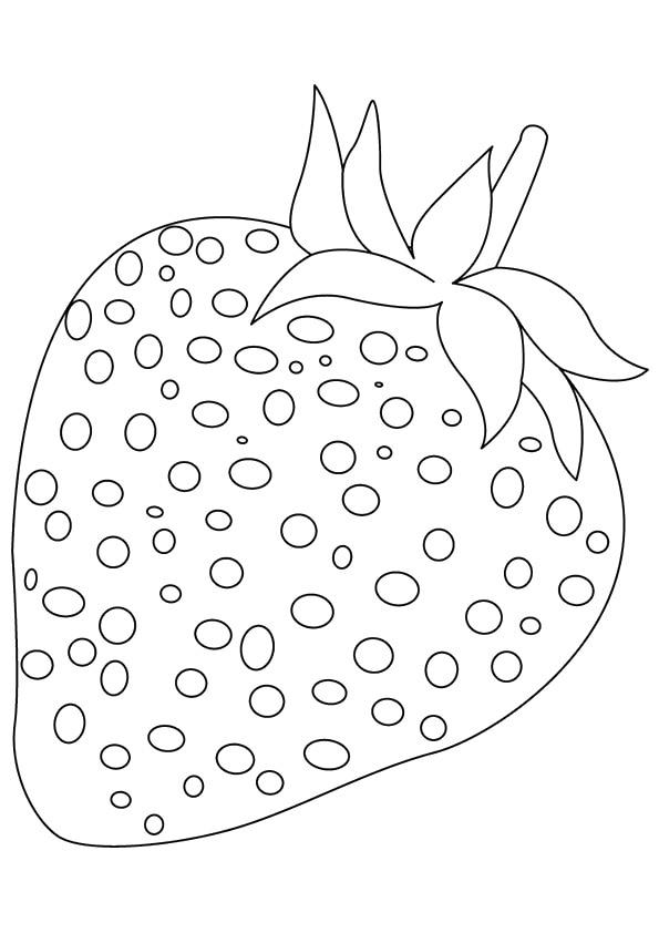Heart-Seed-Berries