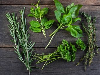5 Useful Herbs For Breastfeeding Moms