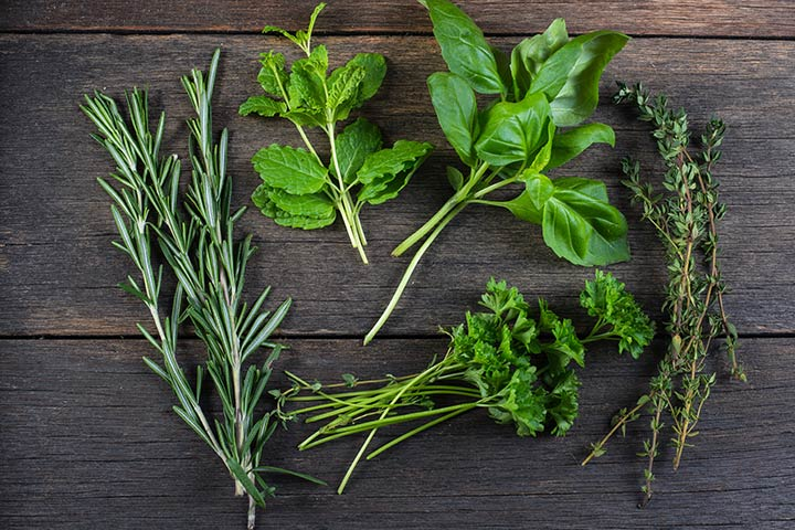 Herbs For Breastfeeding