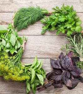 Is It Safe To Take Herbs While Breastfeeding To Boost Milk Supply
