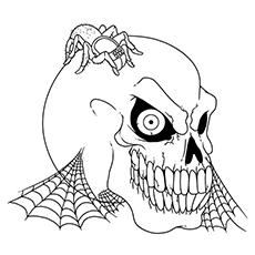 skull coloring pages skull and spider