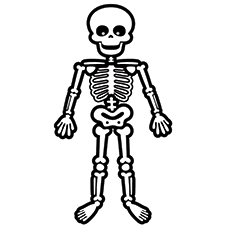 standing skeleton - Halloween Skeleton Coloring Pages