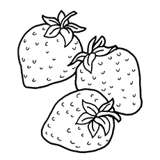 top 15 strawberry coloring pages for your little one - One Coloring Page