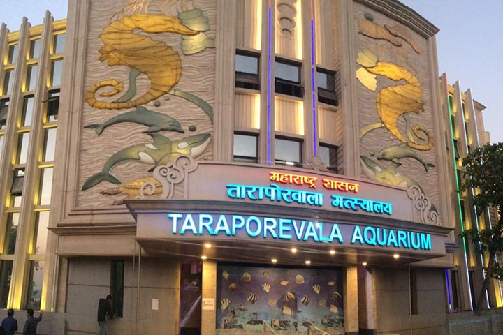 Places To Visit In Mumbai For Kids - Taraporewala Aquarium