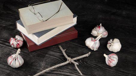 Vampire Novels For Teens
