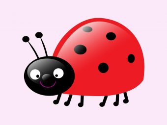 10 Beautiful Ladybug Craft Ideas For Preschoolers