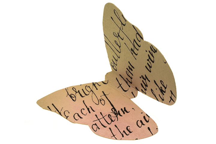 Butterflies with text and images
