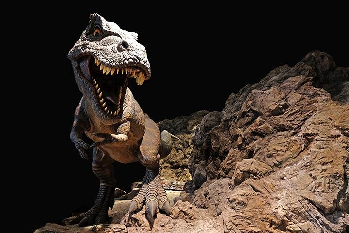Dinosaur Activities For Preschoolers - Dinosaur Environment