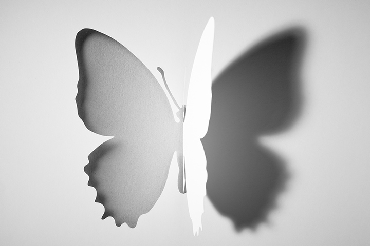 Folded butterfly cutout