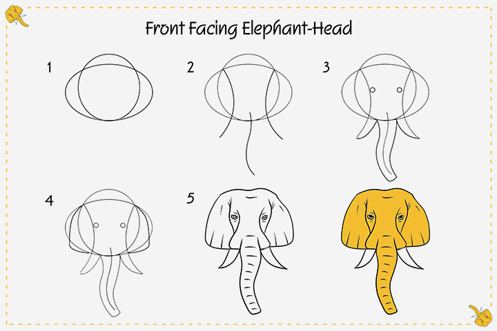 How To Draw An Elephant For Kids - Front Facing Elephant-Head