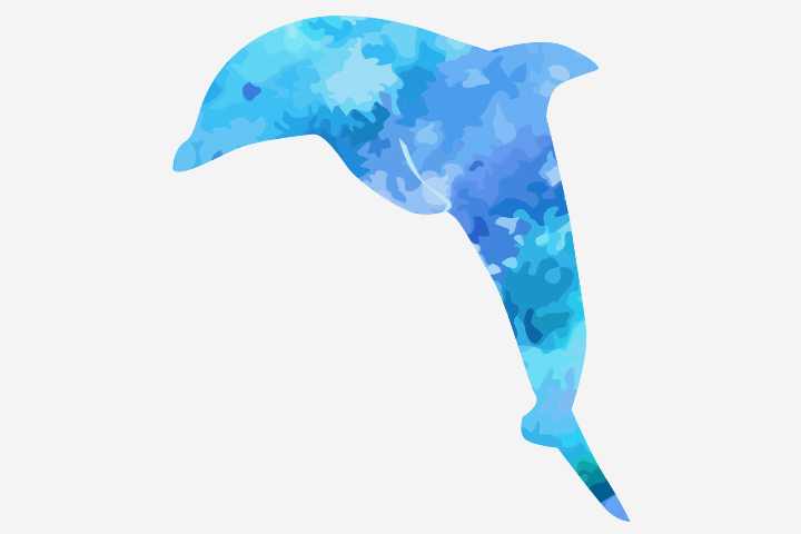 Dolphin Crafts - Spray Painted Dolphin