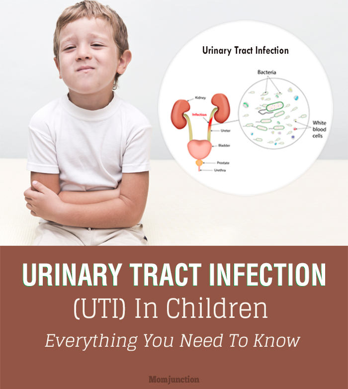 All About Urinary Trac...