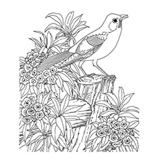 coloring pages nature 27 Printable Nature Coloring Pages For Your Little Ones coloring pages nature