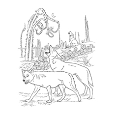 Nature Coloring Pages - Desert