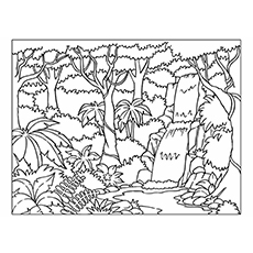 Nature Coloring Pages Forest