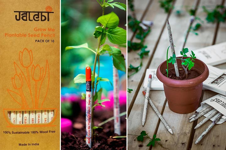 Grow Me Plantable Pencils