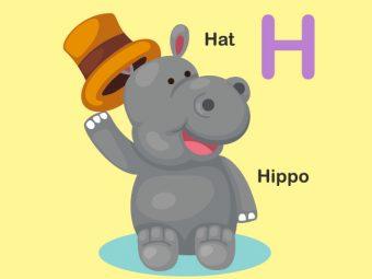 10 Interesting Hippo Crafts For Your Preschooler