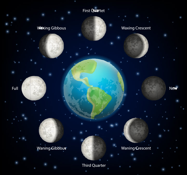 Phases of the Moon facts for kids