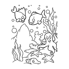 Nature Coloring Pages The Magnificent Ocean Life