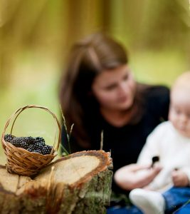 Blackberries For Babies – Are They Safe
