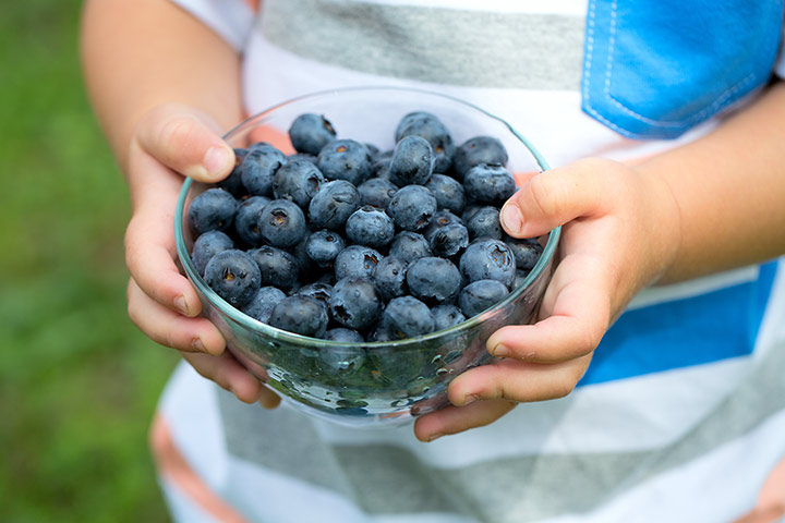 Blueberries For Kids